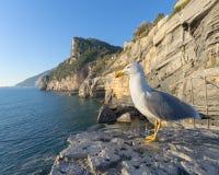 A look on the sea at the Byron cave, Portovenere, 5 terre, Liguria, Italy stock photos