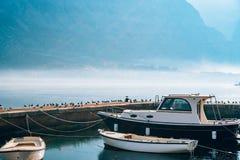 Seagull na łódkowatym moorage Zakończenie Fotografia Royalty Free