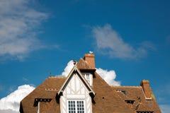 Seagull na dachu Obraz Stock