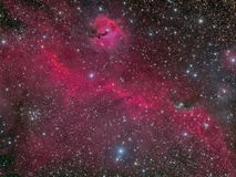 The Seagull Nebula. Astrophoto of the Seagull Nebula aka IC 2177 stock images