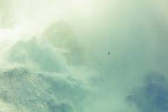Seagull on Niagara Stock Photos