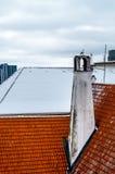 Seagull obsiadanie na starym kominie przy czerwień dachem Obrazy Royalty Free