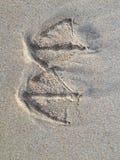 Seagull odcisk stopy Obrazy Royalty Free