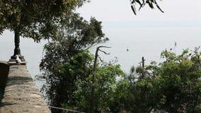 seagull odprowadzenie na ścianie zbiory