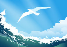 Seagull On The Ocean Wave Stock Photo