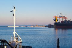 Seagull på masten på en bakgrund av hamnen royaltyfri fotografi