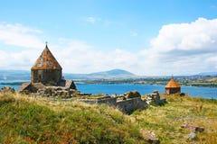Seagull på sjön Sevan Royaltyfri Bild