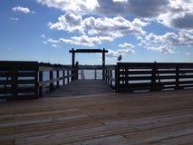 Seagull på stången Royaltyfri Foto