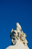 Seagull på statyn Royaltyfri Fotografi