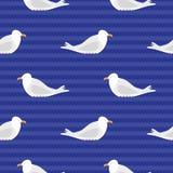 Seagull pattern Stock Photos