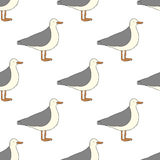 Seagull pattern Royalty Free Stock Photography