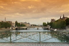Seagull on pont des arts bridge in Paris Stock Photo
