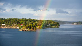 Seagull and rainbow over green coast of Baltic Sea Royalty Free Stock Photos