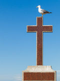 Seagull resting on the cross. Seagull on a cross with blue sky background Royalty Free Stock Images