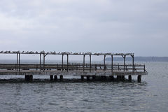 Seagull resting on the pier. Where a beautiful view of the sea Royalty Free Stock Images