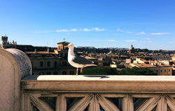 Seagull in Rome Stock Photo