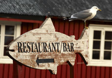 Seagull sitting. On a fishform, wooden sign Royalty Free Stock Photos