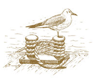 Seagull sitting on a bollard drawn by hand Royalty Free Stock Image