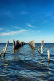 Seagull sitting on a pile of abandoned pier in the Baltic sea Stock Photo