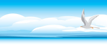 Seagull on a skyscape background. Illustration Royalty Free Stock Photography