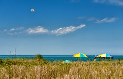 Summer at Martha's Vineyard stock photos
