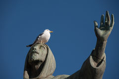 Seagull on st. Francis statue in Piazza San Giovanni, Rome, Italy. royalty free stock image