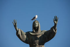 Seagull on st. Francis statue in Piazza San Giovanni, Rome, Italy. Stock Photo