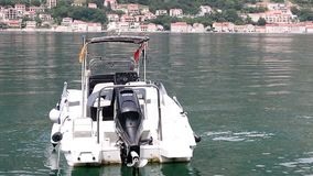 The seagull stands on a speedboat Kotor bay