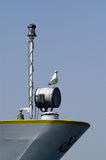Seagull on stern of ship. A view of a seagull perched on a cannister on the stern of a ship Royalty Free Stock Image