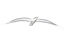 Seagull (vector). Seagull, drawing free-hand (cmyk to rgb Royalty Free Stock Image