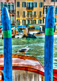 Seagull at Venice Stock Images
