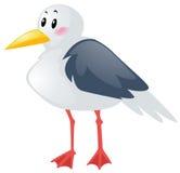 Seagull on white background. Illustration Stock Images