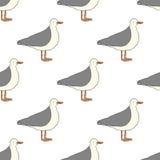 Seagull wzór Fotografia Royalty Free