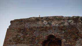 Seagullen fördärvar på av forntida arkitektur arkivbild