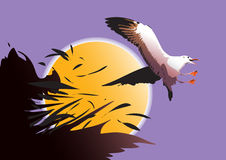 Seagullfågelflyg Stock Illustrationer