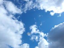 Seagullflyg i blåttskyen Arkivbilder