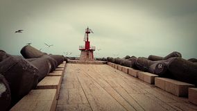 Seagulls και φάρος Στοκ Φωτογραφία