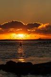 Seagulls που παίρνουν στον αέρα από μια παραλία κατά τη διάρκεια του ηλιοβασιλέματος Στοκ φωτογραφία με δικαίωμα ελεύθερης χρήσης