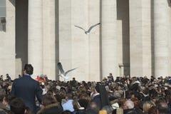 Seagulls που πετούν πέρα από τον πιστό Στοκ Εικόνες