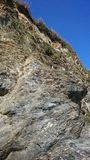 Seagulls που τοποθετούνται στον απότομο βράχο Στοκ εικόνες με δικαίωμα ελεύθερης χρήσης