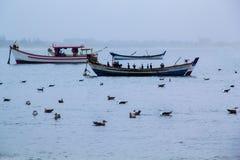 Seagulls σε μια νεφελώδη ημέρα Στοκ εικόνες με δικαίωμα ελεύθερης χρήσης
