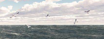 seagulls royalty ilustracja