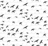 Seagulls abstract seamless pattern. Flying birds Flock gray  Royalty Free Stock Image