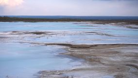 Seagulls on a blue lake. Seagulls on a blue salt lake stock video