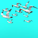 Seagulls On Blue Text Space. 