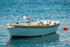 Seagulls on boat. Anchored fishing boat with orange buoy and two seagulls sitting and resting Royalty Free Stock Photos