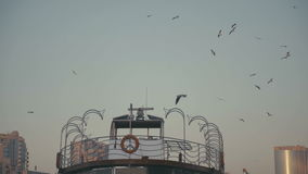 Seagulls circling around the pier. Orange lifebuoy. UAE, 2017: Dubai Creek. Seagulls circling around the pier. Orange lifebuoy. Peaceful atmosphere: sea port stock footage