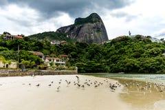 Seagulls flying underneath bridge in the point where the sea meets the Marapendi Lagoon, in Barra da Tijuca, Rio de Janeiro.  royalty free stock images