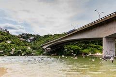 Seagulls flying underneath bridge in the point where the sea meets the Marapendi Lagoon, in Barra da Tijuca, Rio de Janeiro.  royalty free stock image
