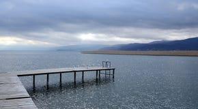 Seagulls in Lake Ohrid, Macedonia Stock Photo
